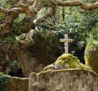 Ancient stone cross, Convent of the Capuchos (Sintra, Lisbon Region, Portugal)-1400