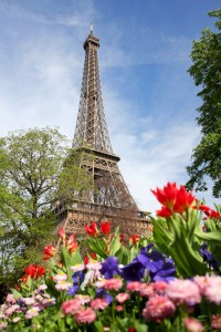 Spring morning with Eiffel Tower, Paris, France-1600